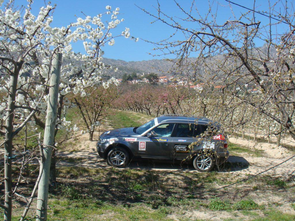 BMW X Experience 2009 4