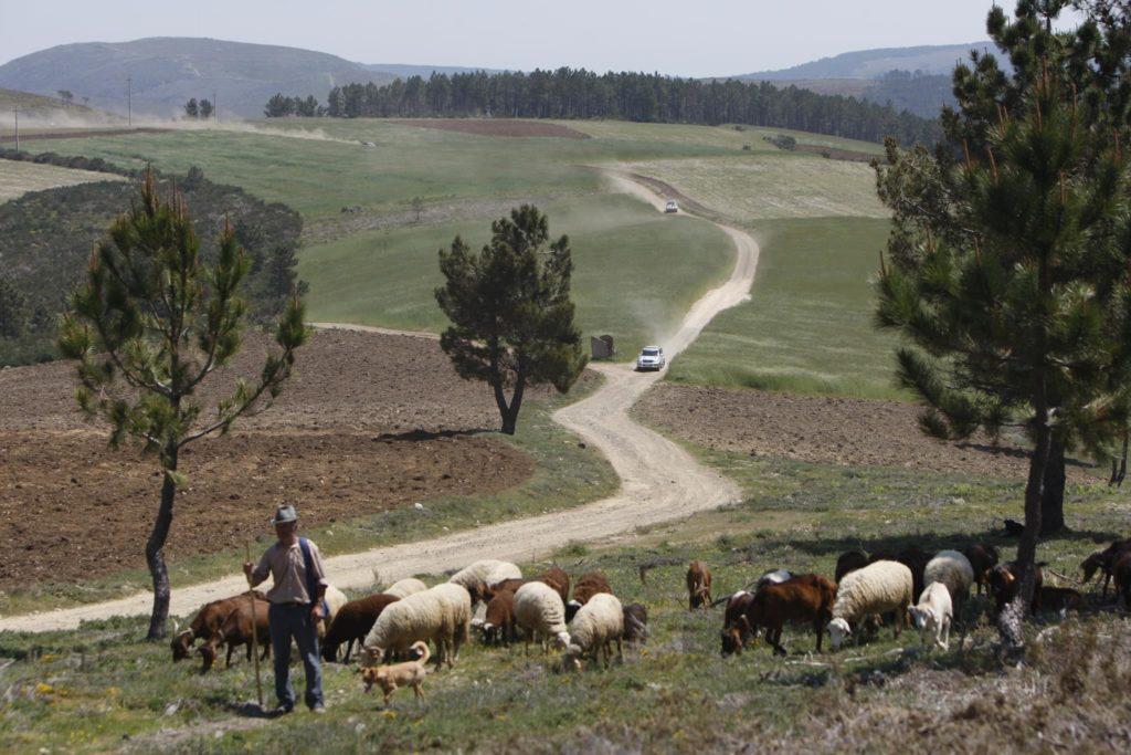 Desafio Turismo de Portugal 4X4 2010 37