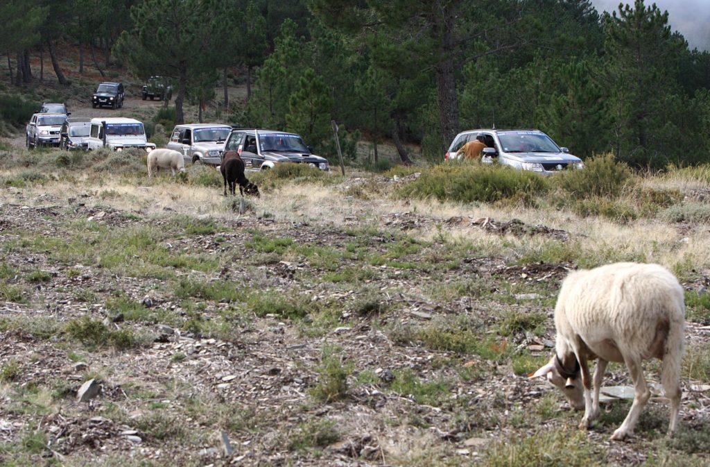 Raid Inatel Serra da Estrela 2009 105