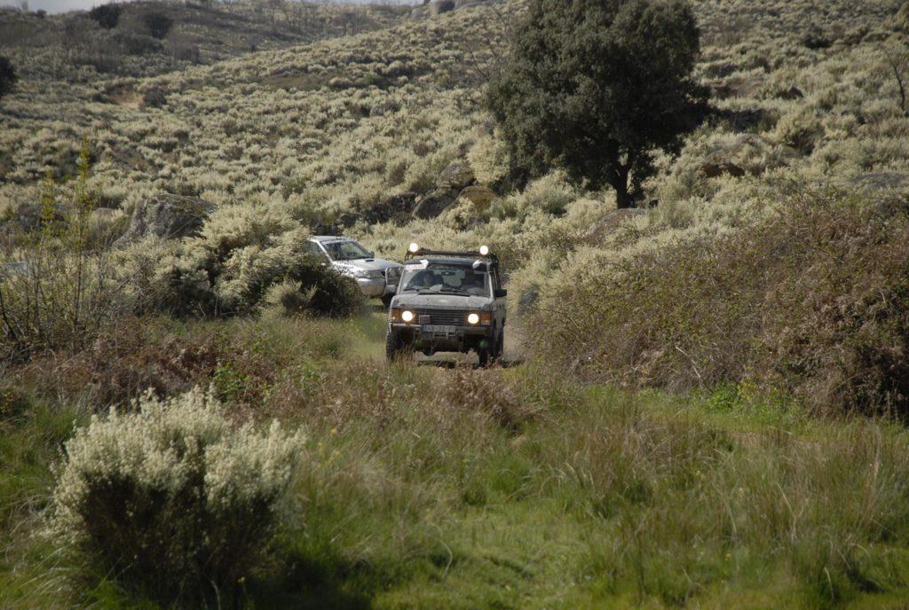 VI Off Road ACP 2008 22