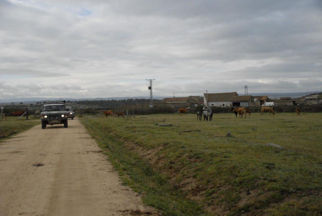 VI Off Road ACP 2008 27