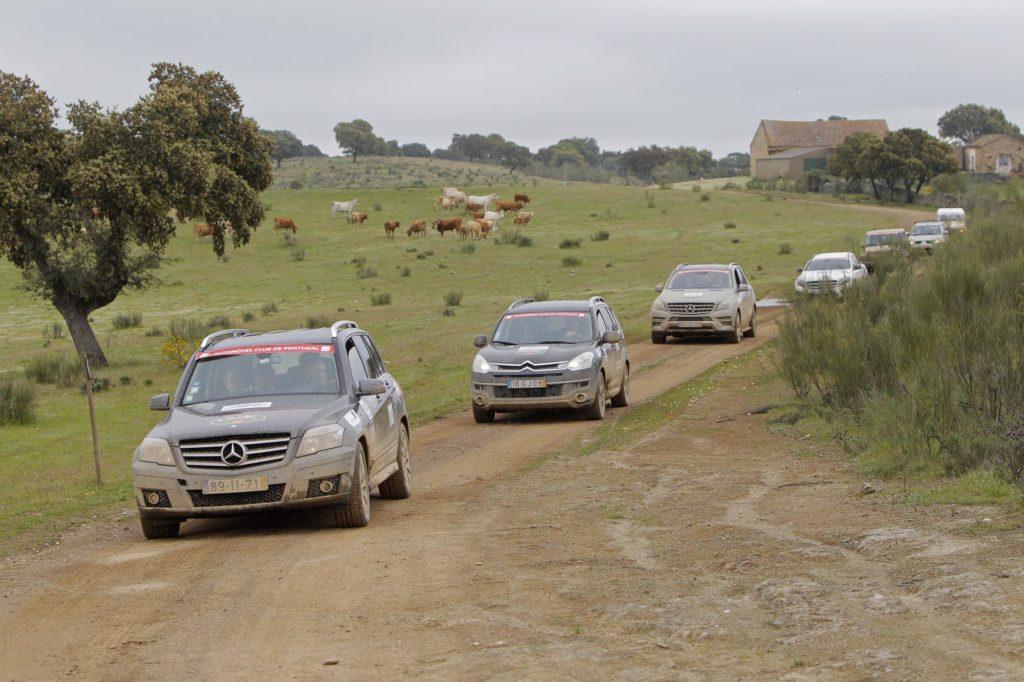 XII Off Road Bridgestone ACP 2014 120