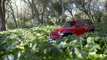 Jeep Wrangler Rubicon 3