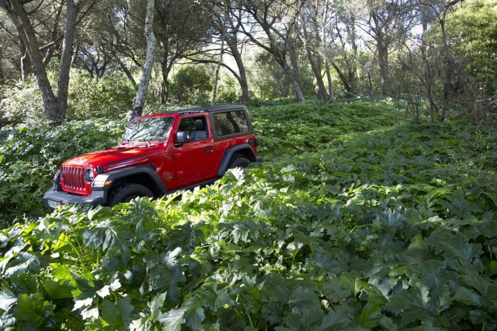 Jeep Wrangler Rubicon 33