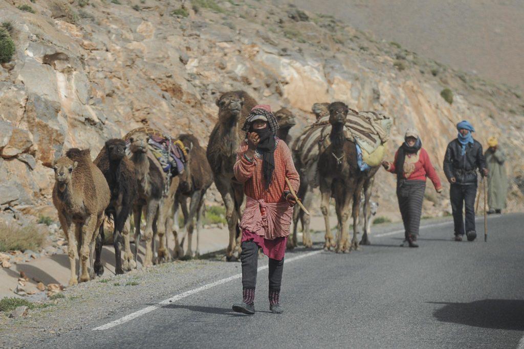 Off Road Bridgestone First Stop Marrocos 2019 1702