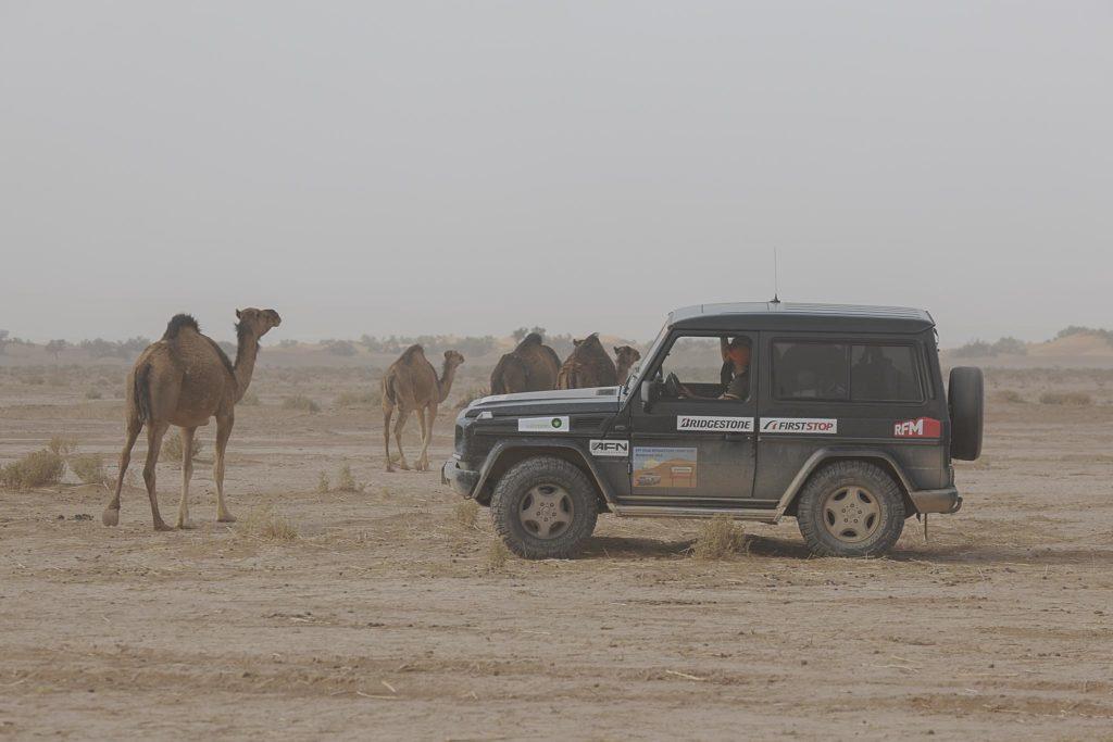 Off Road Bridgestone First Stop Marrocos 2019 2095