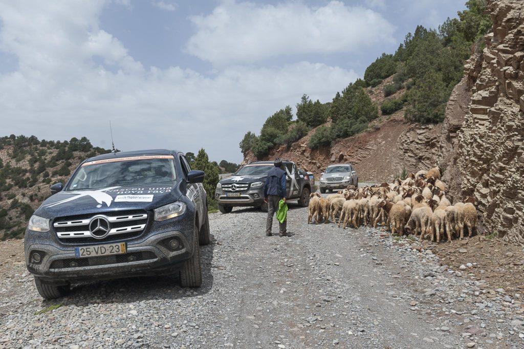 Off Road Bridgestone First Stop Marrocos 2019 998