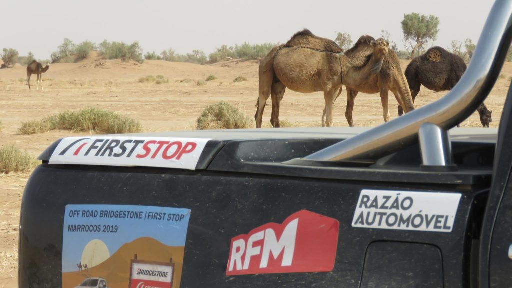 Off Road Bridgestone First Stop Marrocos 2019 NA 935