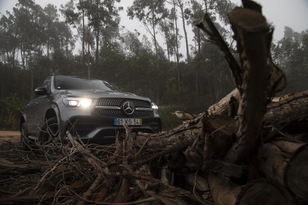 Mercedes Benz GLE350d 30