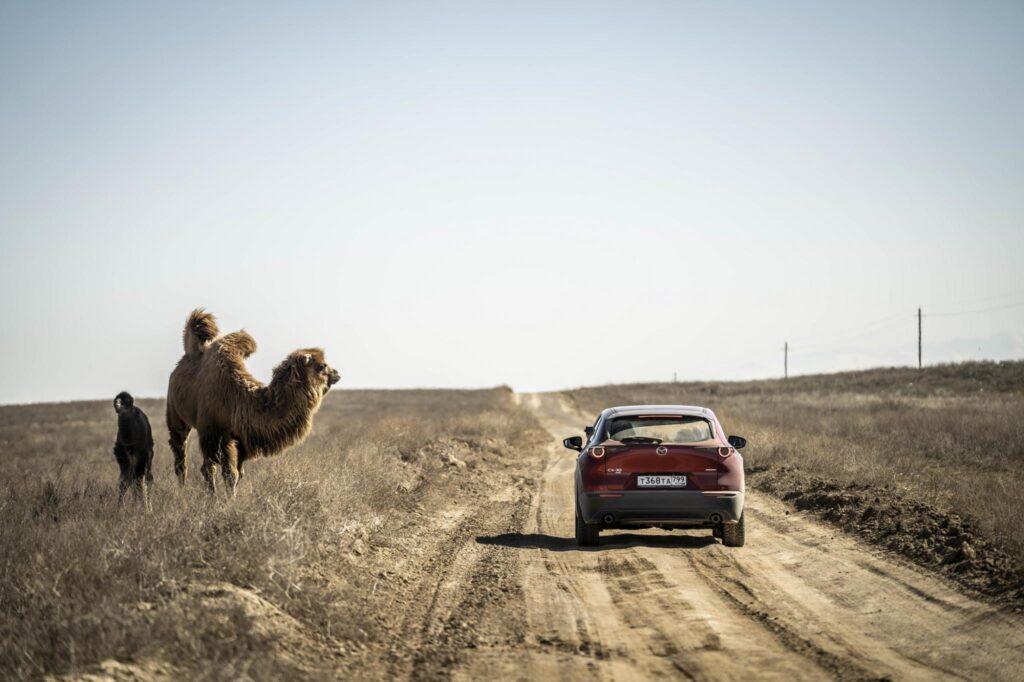 Mazda Epic Drive CX 30 Kazakhistan 1